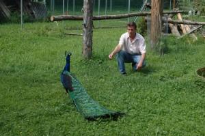 OV_Vogelpark_5093_