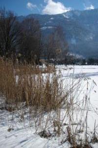 Birka_Naturschutz_025