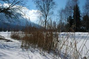 Birka_Naturschutz_028